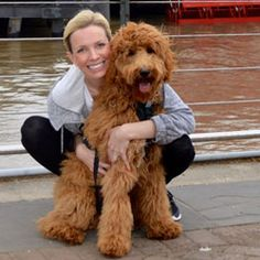 F1B Goldendoodles DoodleLane You can really see the