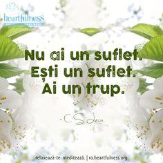 Nu ai un suflet. Ești un suflet. Ai un trup. ~ C. S. Lewis #heartfulness #cunoaste_cu_inima #hfnro Heartfulness Romania - Google+