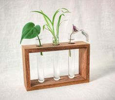 Plant propagation station - handmade butternut test tube stand for rooting cuttings, test tube bud vase, test tube rack, houseplant growing Bud Vases, Flower Vases, Potted Flowers, Dried Flowers, Test Tube Crafts, Wood Chopping Block, Window Sill Decor, Pallet Pictures, Wood Rack