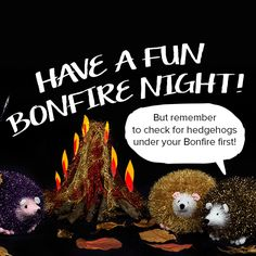 Have a wonderful bonfire night! But make sure you look out for little hedgehogs! These Tinsel Chunky hedgehogs need protecting! Knitting Projects, Knitting Patterns, Hedge Hog, Bonfire Night, King Cole, Siamese Cats, Party, How To Make, Fun