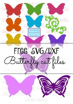Free Butterfly SVG Cutting file for Silhouette and Cricut- Freebie Friday
