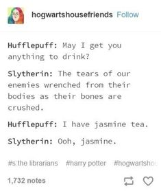 I love being slytherin with a hufflepuff bestie Harry Potter Puns, Images Harry Potter, Harry Potter Houses, Harry Potter Cast, Harry Potter Love, Hogwarts Houses, Harry Potter Universal, Harry Potter Characters, Harry Potter World