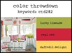 Color Throwdown 282