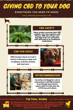 21 Hemp and CBD Related Best Quotes images | Best quotes