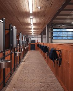 No Matter What, Horse Barns, Horse Stuff, Beautiful Horses, Planer, Bespoke, Future, Board, Projects