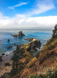 A View From Ecloa State Park:   See more photos at  http://robert-bales.artistwebsites.com/