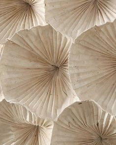 island of silence - Concept Vintage Sand - The color concept VINTAGE SAND combines a sand / beige tone with delicate and darker shades of blue - Dried Flowers, Paper Flowers, Paper Leaves, Color Concept, Beige Aesthetic, Origami Art, Origami Design, Origami Dress, Shades Of White
