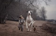 Photographer Andy Seliverstoff, spent four months taking pictures in St. Petersburg, Russia, for a book called 'Little Kids and Their Big Dogs'. The photos show children under with giant dogs. Dogs And Kids, Animals For Kids, Animals And Pets, Cute Animals, Love My Dog, Huge Dogs, Giant Dogs, Photos With Dog, Great Dane Dogs