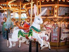 Carousel rabbit. Because why not?