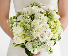 Bridal bouquet of white roses, Queen Anne's Lace, green and white hydrangea, stock and green hypericum berries.
