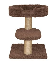 Classy Kitty 23 Two Tier Cat Tree with Lounger Coco Brown 205x23x23 by North American Pet ** Details can be found by clicking on the image.
