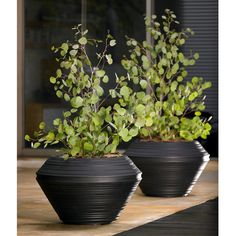 Have to have it. Round Resin Daniel Planter - $27.01 @hayneedle