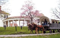 Horsedrawn carriage rides on the Blennerhassett Island are available throughout the season.