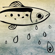 都市裡的傾盆大魚