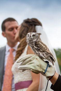 Dahlia Filled Audubon Center at Mill Grove Pennsylvania Wedding With Animal Surprises