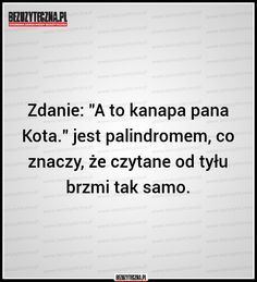 Najkrótsza nazwa świata, to Wtf Funny, Funny Memes, Daily Quotes, Life Quotes, Swimming Motivation, Man Humor, Quotations, Fun Facts, Positivity