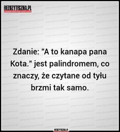 """Zdanie: """"A to kanapa pana… » Bezuzyteczna.pl- Codzienna dawka wiedzy bezuzytecznej"""