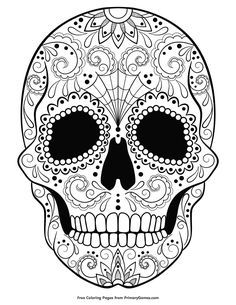 233 best sugar scull coloring images skull coloring