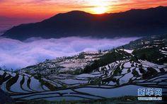 UNESCO), inscribió este sábado el panorama cultural de las Terrazas de Arroz de Honghe Hani, China,