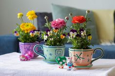 Spend your golden afternoon planting flowers and add a pop of color to your home.