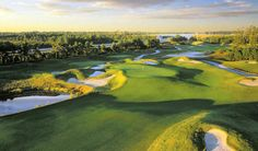 Dye Course at Barefoot Resort