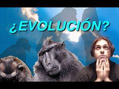 Tres mentiras peligrosas de la evolución - El Mundo de Mañana