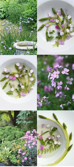 Garden soup with edible flowers