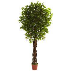 7.5-foot UV Resistant Ficus Tree