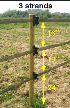 Marvelous Garden Fencing Horizontal Ideas 5 Imaginative Tips: Cheap Fence How To Build fence sport gear.Fence Door Architecture cheap fence how to build. - Art Of Equitation