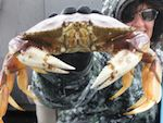 Depoe Bay, Oregon  Big Fun from the World's Smallest Harbor