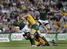 Championship: Australia e Sudafrica, adesso fateci divertire - On Rugby