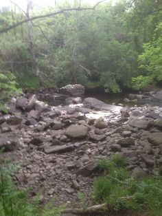 A very dry river Ullapool. Dry River, Heaven On Earth, June, Plants, Plant, Planets