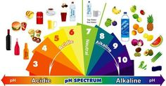 top-10-best-alkaline-foods-to-eat-every-day-for-vibrant-health