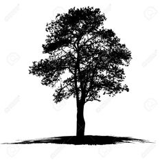 Oak Tree Silhouette Cliparts Stock Vector And Royalty Free Oak