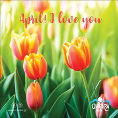 April I ❤️ you!