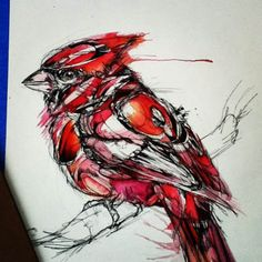 The redbird <3 - Abby Diamond