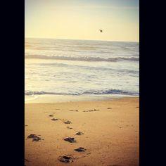 #nature #summer #beach #love