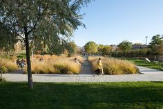 Martin_Luther_King_Park-Atelier_Jacqueline_Osty-11 « Landscape Architecture Works   Landezine