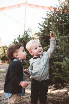 Click to shop the Holiday Plaids Capsule of matching bow and bow tie sets. Our bows are handmade by women in the USA and guaranteed for life. Classic holiday style for your free spirited little boys and girls.
