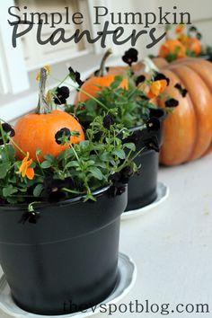 DIY simple pumpkin planters