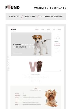Website Theme , Pound - Animal Care Responsive