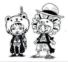 Oso-kun (Law) y León-kun (Luffy) ✌