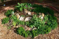 Το φθινόπωρο θεωρείται ιδανική εποχή για τη σπορά και τη φύτευση πολλών βοτάνων, καθώς η θερμοκρασία είναι ακόμα καλή και η υγρασία διατηρείται στο έδαφος. Αξιοποιώντας στο έπακρο κάποια από τις γωνιές του κήπου μας, μπορούμε να κατασκευάσουμε ένα υπερυψωμένο βoτανο-μποστάνι.