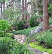 The job of hillside landscaping is a problem with more homes built on sites which have major changes in elevation and steep slopes. This gardening trend is likely to continue in cities and suburban ar Landscaping On A Hill, Landscaping Around Trees, Mulch Landscaping, Landscaping Supplies, Landscaping With Rocks, Landscaping Ideas, Backyard Ideas, Steep Hillside Landscaping, Sloping Backyard