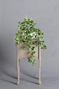 צמחיה מלאכותית נמוכה • קרת צמחייה מלאכותית Decoration, Plants, Decor, Decorations, Plant, Decorating, Dekoration, Planets, Ornament