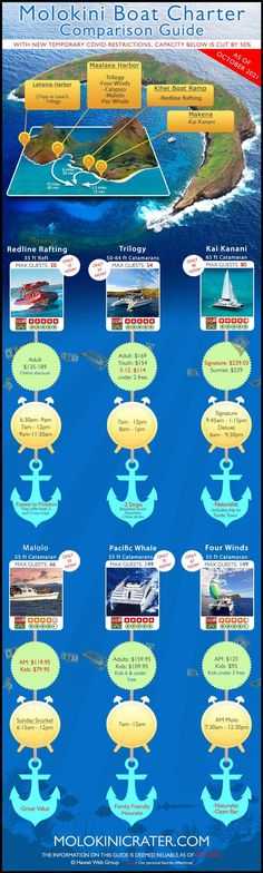 We thought it would be helpful to share some of the more important characteristics that influence your decision when booking a boat charter to Molokini Crater off the south coast of Maui, Hawaii. #molokini #snorkel #maui Charter Boat, Hawaii Travel, Snorkeling, Maui, Travel Tips, Infographic, Coast, Tours, Diving