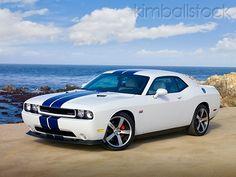 Dodge Challenger SRT8 White With Blue Stripes