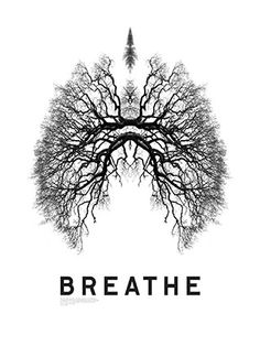 A brilliant poster done by Giles Revell, photographer, working with rainforest conservationists. Notic -- those lungs are trees!