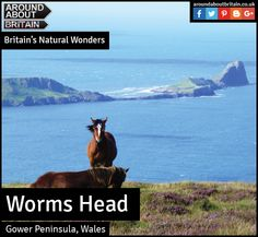 Britain's Natural Wonders:  Worms Head (Gower Penninsula, Wales)  The risk of being marooned only adds to the thrill of visiting Worms Head. This mile-long limestone promontory, literally meaning 'dragon' in old English, lies at the westernmost point of the Gower peninsula, Wales's most beautiful sweep of coastline.