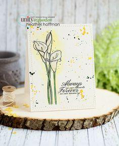 Lily Blossom Card